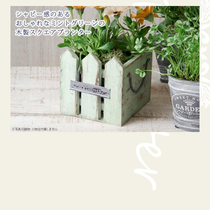 シャビー感のあるおしゃれなミントグリーンの木製スクエアプランター