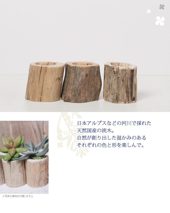 日本アルプスなどの河川で採れた天然国産の流木。自然が創り出した温かみのあるそれぞれの色と形を楽しんで。