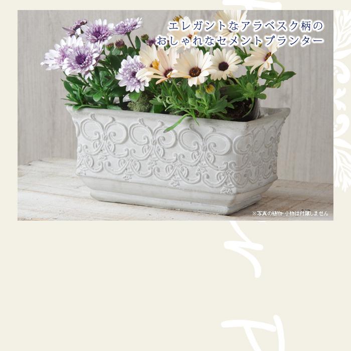 エレガントなアラベスク柄のおしゃれなセメントプランター(植木鉢)