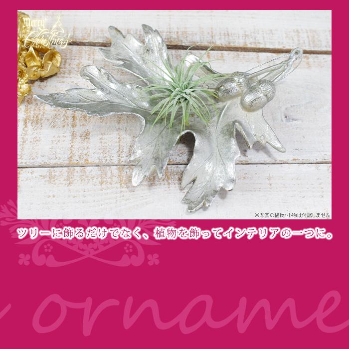 ツリーに飾るだけでなく、植物を飾ってインテリアの一つに。