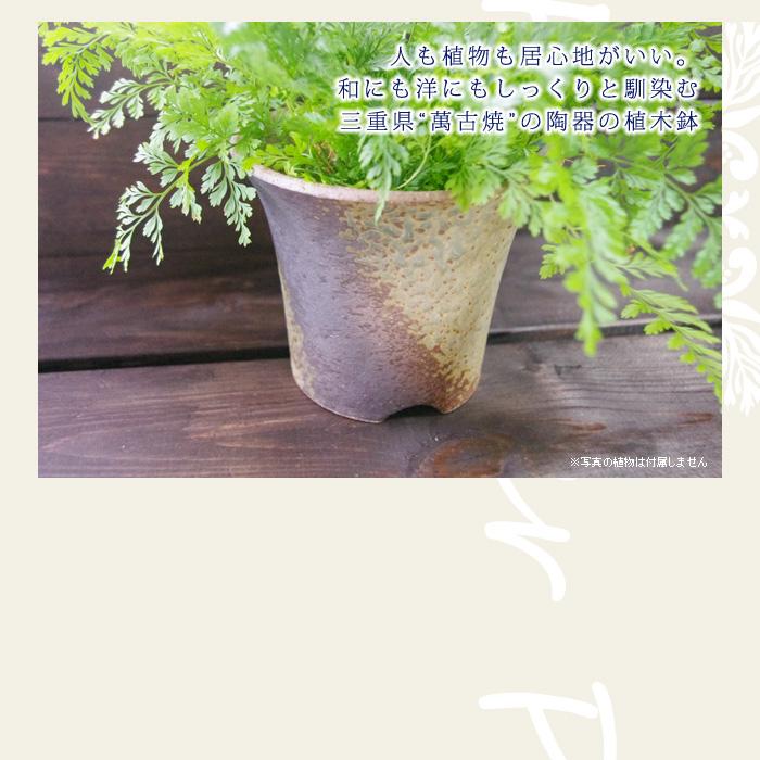 """人も植物も居心地がいい。和にも洋にもしっくりと馴染む三重県""""萬古焼""""の陶器の植木鉢"""