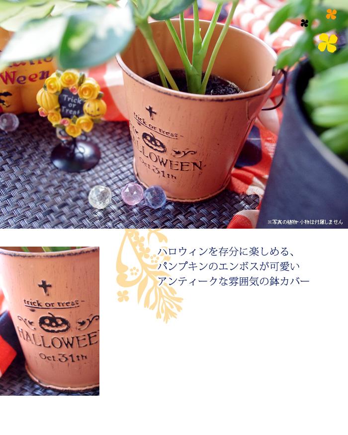 ハロウィンを存分に楽しめる、パンプキンのエンボスが可愛いアンティークな雰囲気の鉢カバー