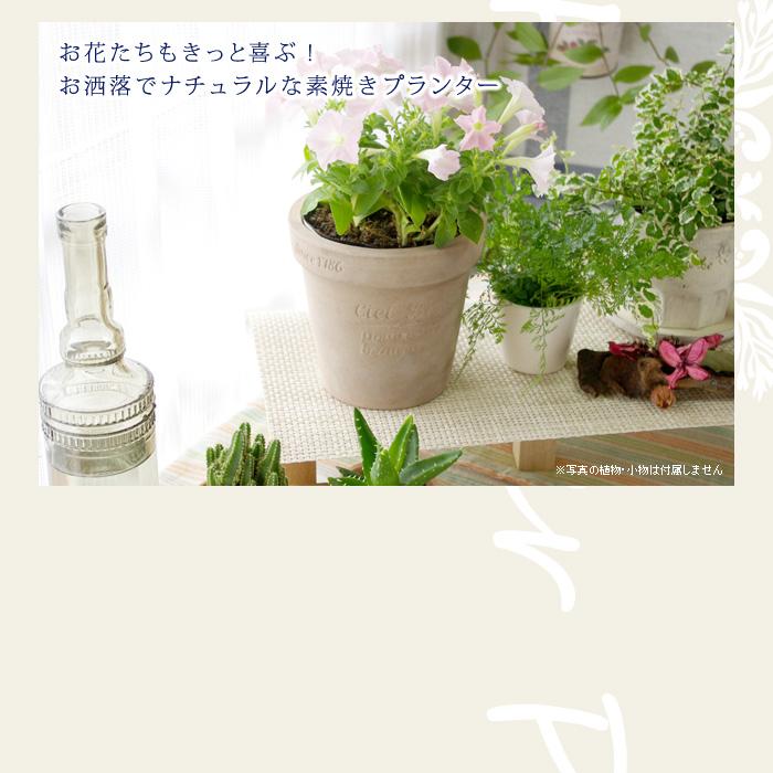 お花たちもきっと喜ぶ。お洒落でナチュラルな素焼きプランター(植木鉢)