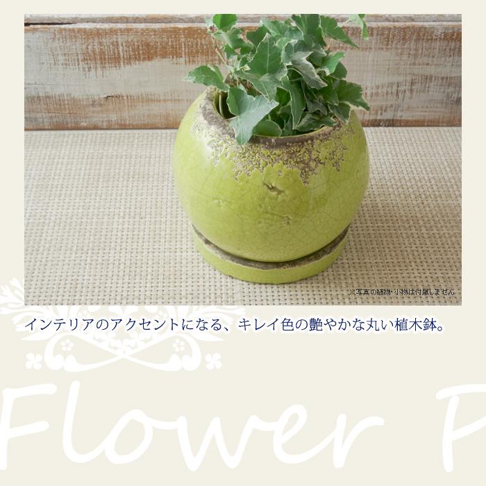 インテリアのアクセントになるキレイ色の艶やかな丸い植木鉢。