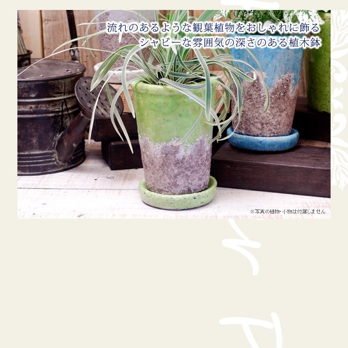 流れのあるような観葉植物をおしゃれに飾る、シャビーな雰囲気の深さのある植木鉢