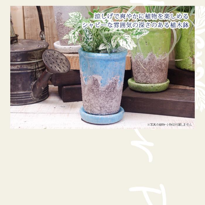 涼しげで爽やかに植物を楽しめる、シャビーな雰囲気の深さのある植木鉢(プランター)