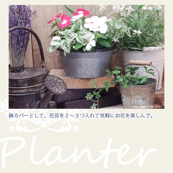 鉢カバーとして、花苗を2〜3つ入れて気軽にお花を楽しんで。