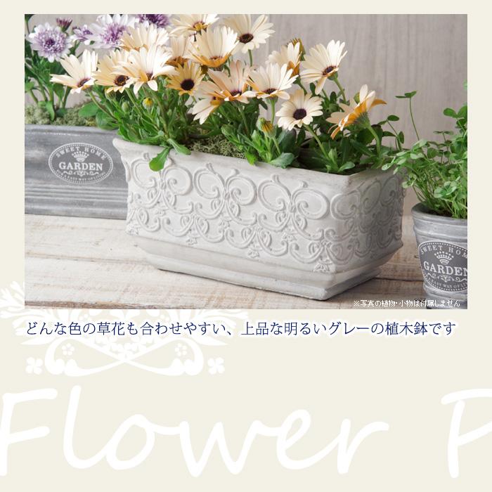 どんな色の草花も合わせやすい、上品な明るいグレーの植木鉢です