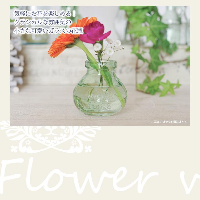 気軽にお花を楽しめる!クラシカルな雰囲気の小さな可愛いガラスの花瓶