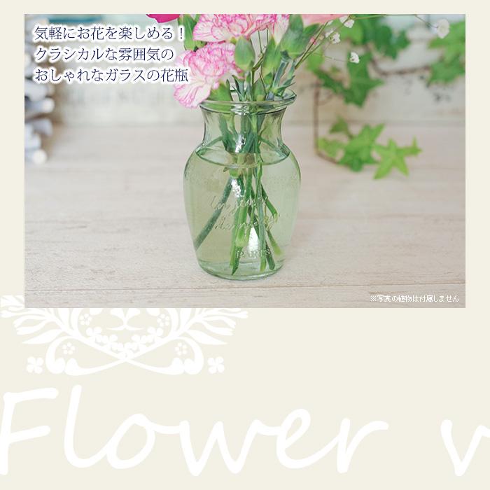 気軽にお花を楽しめる!クラシカルな雰囲気のおしゃれなガラスの花瓶