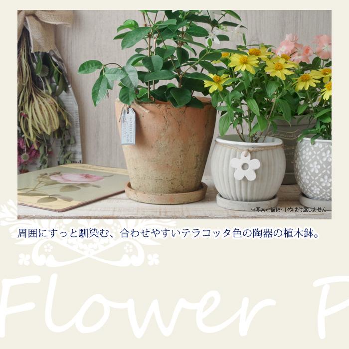 周囲にすっと馴染む、合わせやすいテラコッタ色の陶器の植木鉢