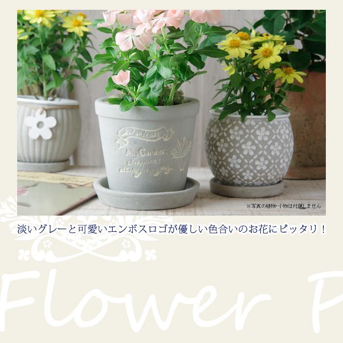 淡いグレーと可愛いエンボスロゴが優しい色合いのお花にピッタリ!