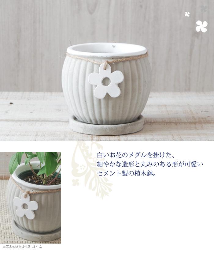 白いお花のメダルを掛けた、細やかな造形と丸みのある形が可愛いセメント製の植木鉢。