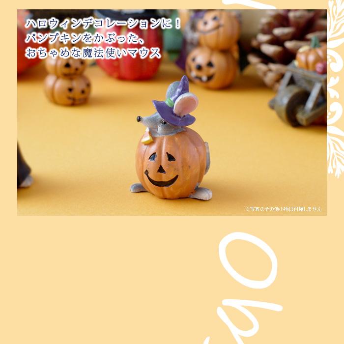 ハロウィンデコレーションに!パンプキンをかぶった、おちゃめな魔法使いマウス