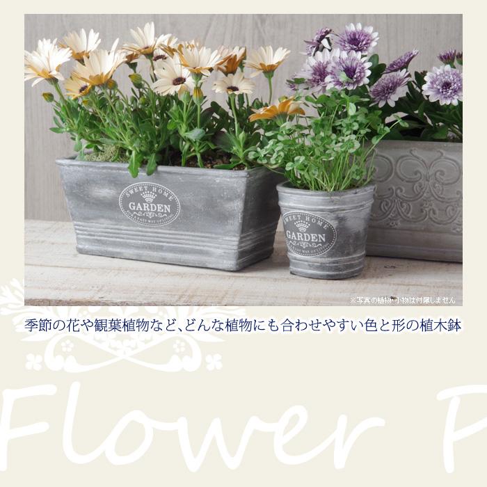 季節の花や観葉植物など、どんな植物にも合わせやすい色と形の植木鉢