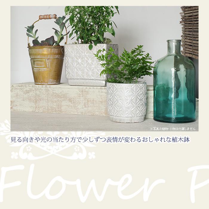 見る向きや光の当たり方で少しずつ表情が変わるおしゃれな植木鉢。