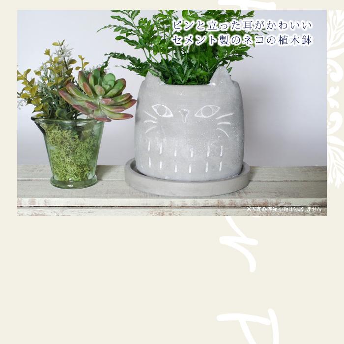 ピンと立った耳がかわいいセメント製のネコの植木鉢