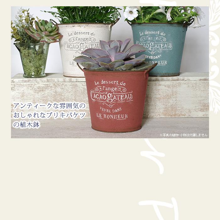 アンティークな雰囲気のおしゃれなブリキバケツの植木鉢(底穴有り)