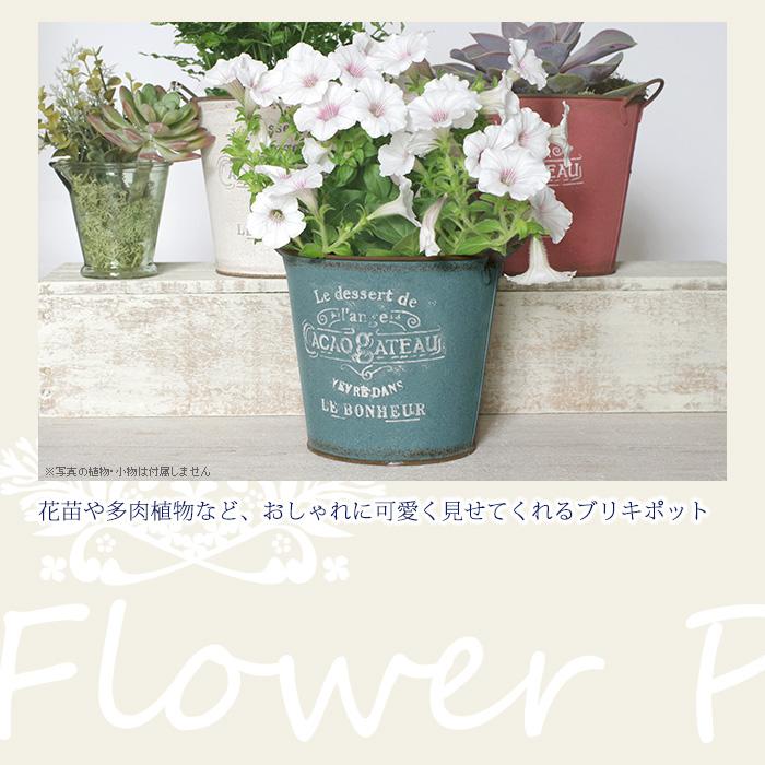 花苗や多肉植物など、おしゃれに可愛くみせてくれるブリキポット