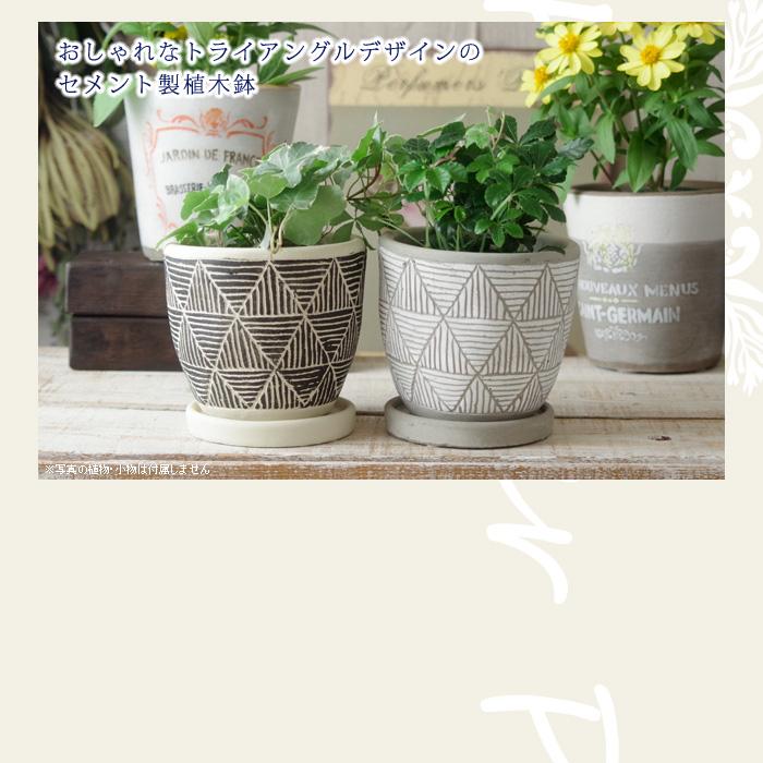 おしゃれなトライアングルデザインのセメント製植木鉢